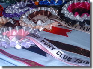 Pony Club 75th Anniversary
